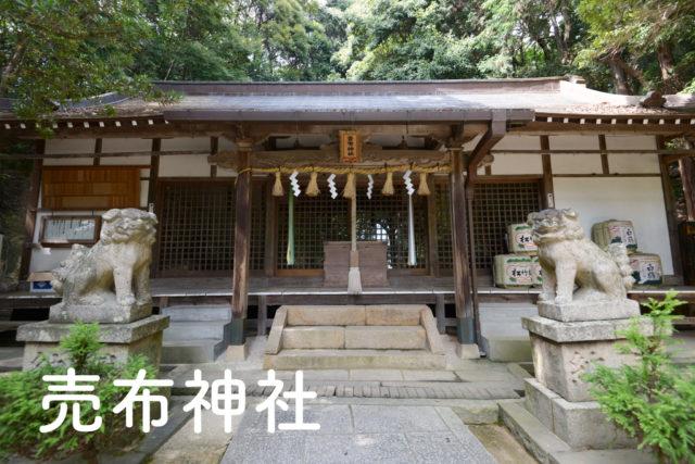 売布神社 サムネイル