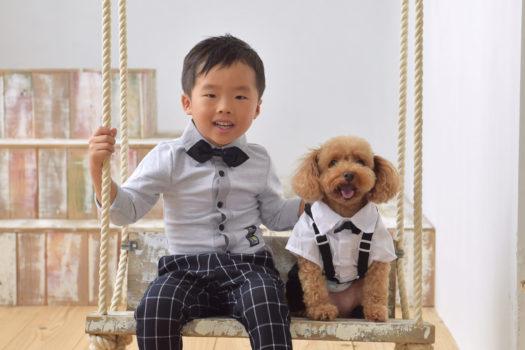 七五三 西宮 五歳 犬 ペット