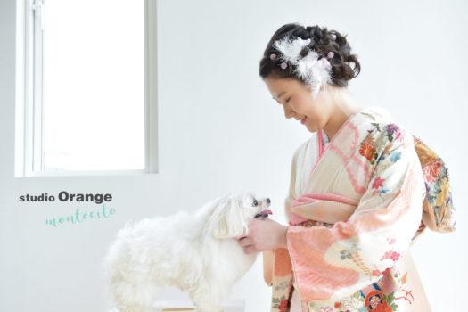 宝塚市 成人式 犬 ピンクの振袖