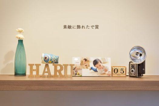宝塚市 写真館 キャンペーン 素敵に飾れたで賞
