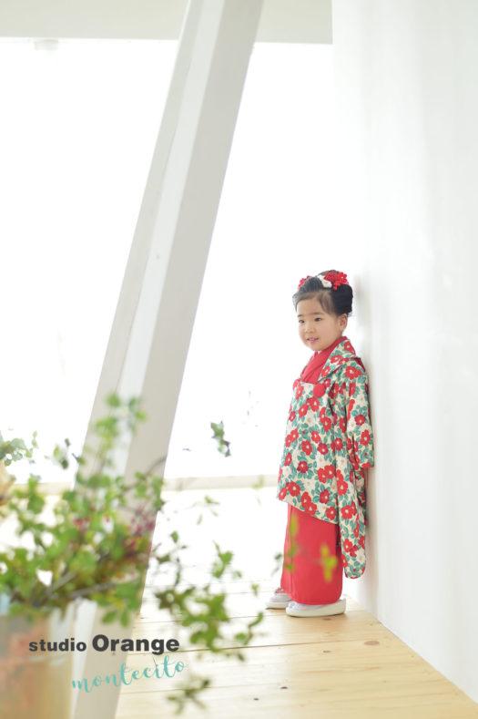 宝塚市 七五三 3歳女の子 椿柄 被布コート
