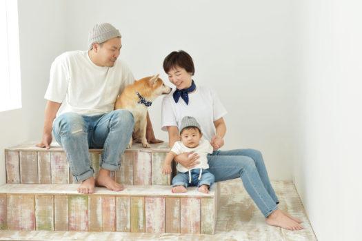 家族写真 伊丹市 柴犬 シンプル