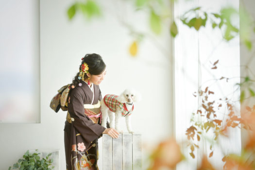 宝塚市 成人式 トイプードルと撮影
