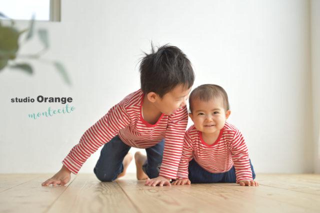 宝塚市 バースデーフォト 1歳 女の子 兄弟写真