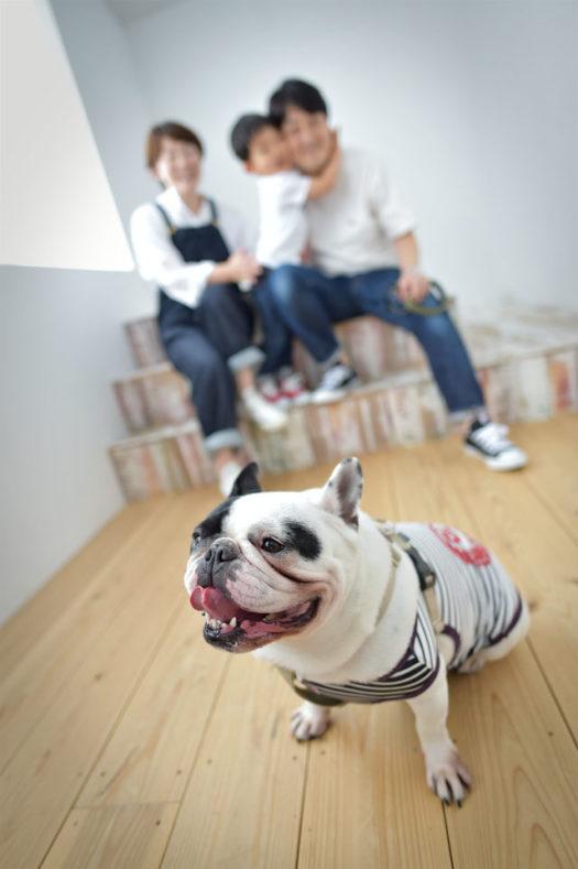 宝塚市 バースデーフォト 犬も一緒