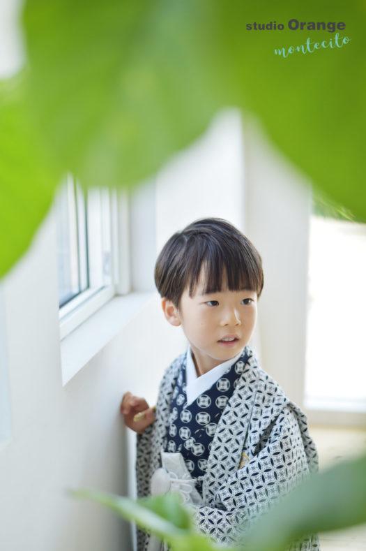 宝塚市 七五三 新作衣装