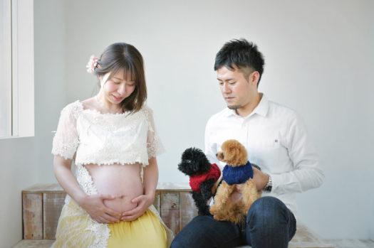 神戸市 マタニティフォト 犬と撮れる
