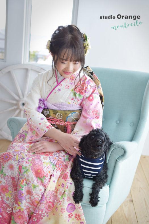 三田市 成人式 トイプードル 犬と撮れる写真館