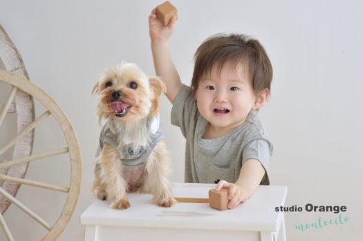 宝塚市 写真館 お誕生日撮影 バースデー 男の子 犬