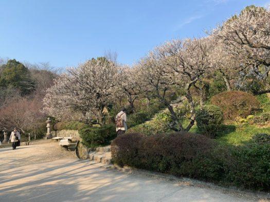 中山寺 観音公園