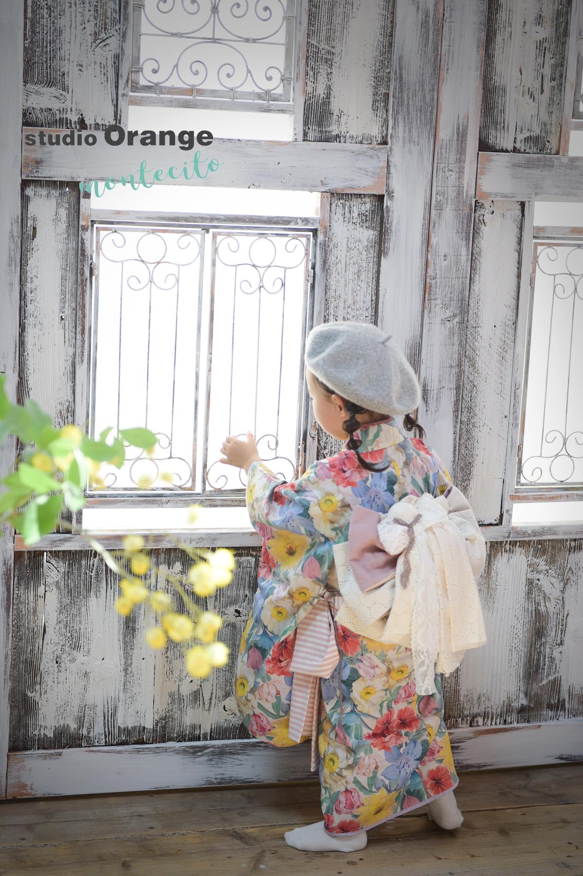 宝塚市 3才 帯の着物