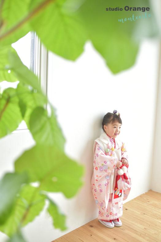 宝塚市 七五三 3才 自然光