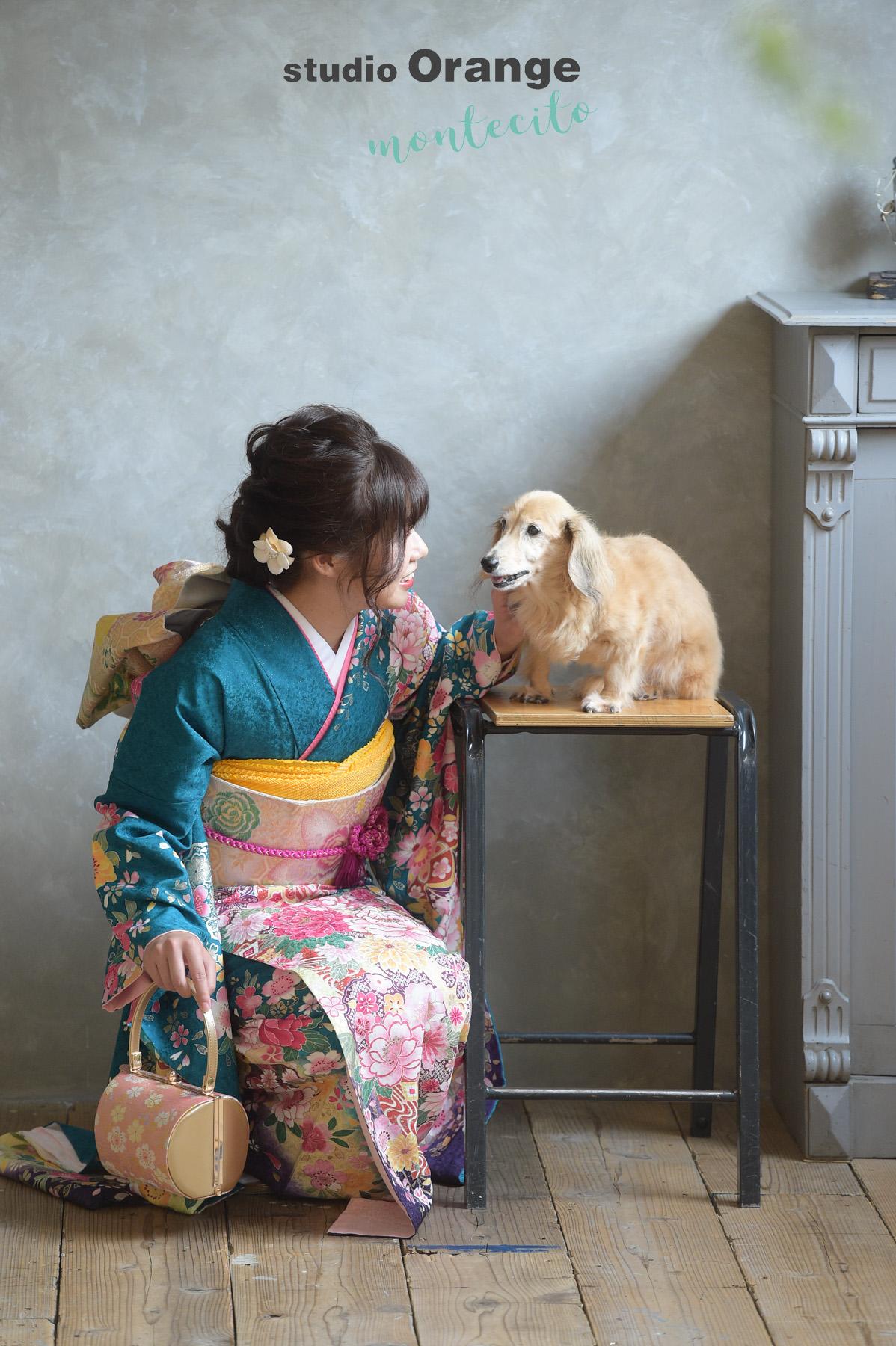 宝塚市 成人式 ダックスフント 犬と写真撮影