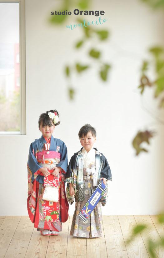 宝塚市 七五三 兄弟写真