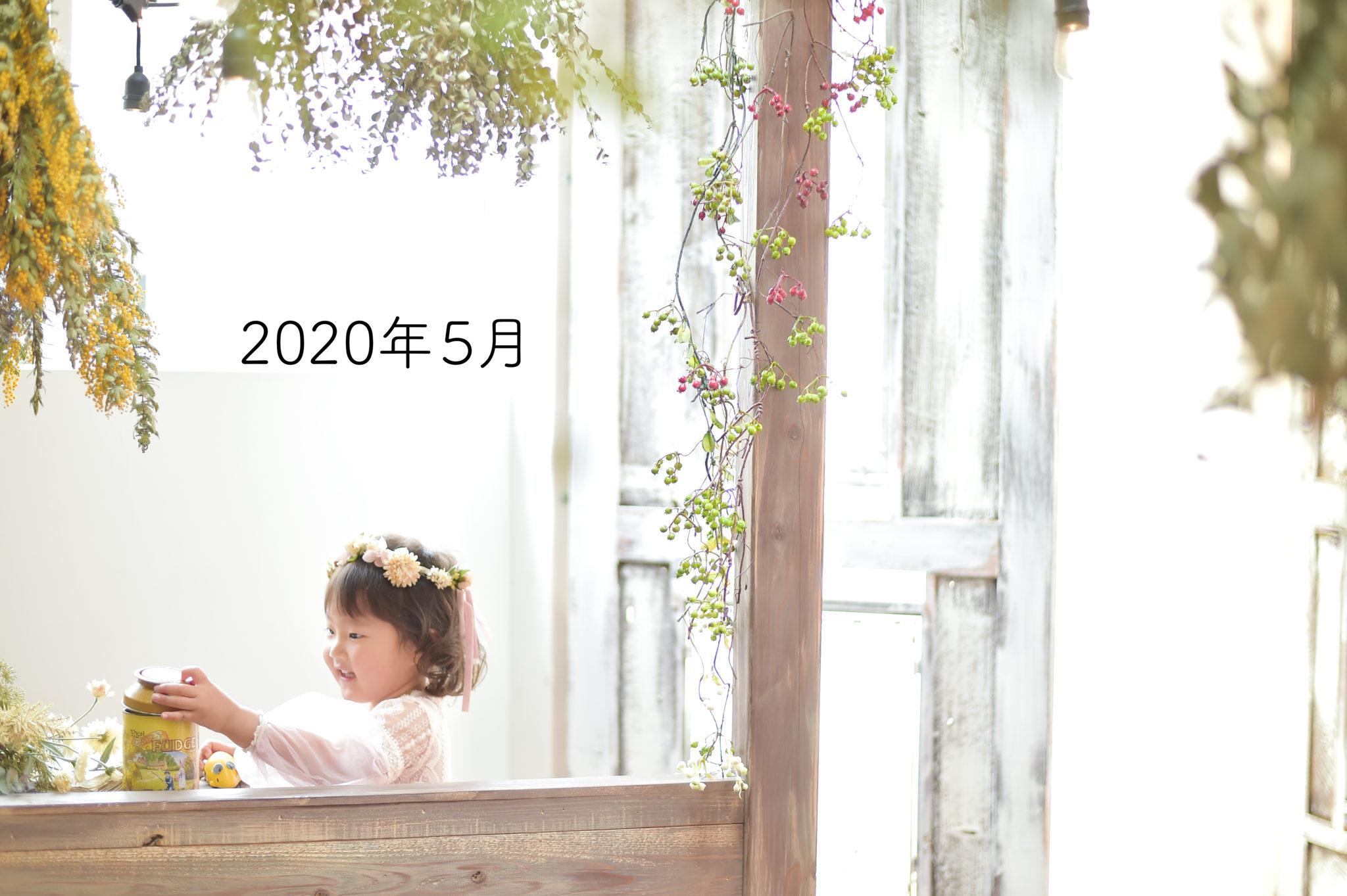宝塚市 写真館 スタジオオレンジモンテシート