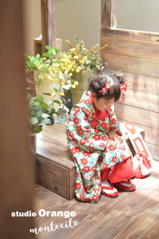 宝塚市 七五三 椿の着物