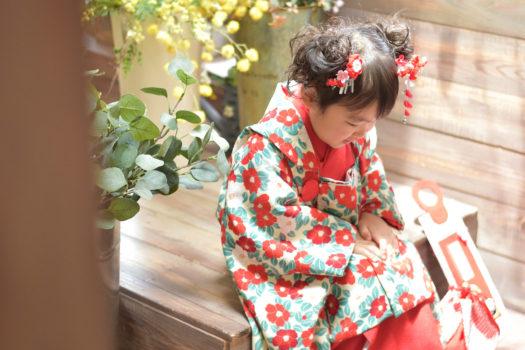 七五三 3才女の子 椿柄着物