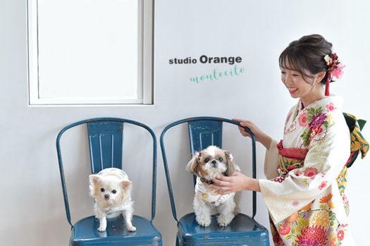 宝塚市 成人式 前撮り 後撮り 振袖 犬 スタジオオレンジモンテシート