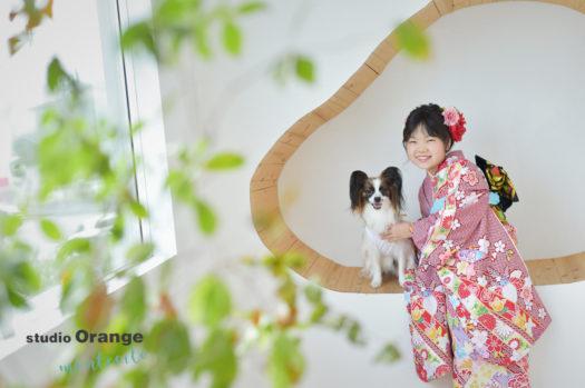 宝塚市 写真館 十歳記念 犬