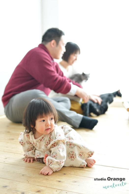 大阪市 お誕生日撮影 家族撮影