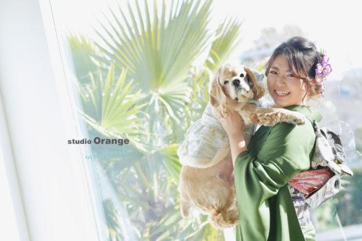 宝塚市 成人式 写真館 フォトスタジオ スタジオオレンジモンテシート 振袖