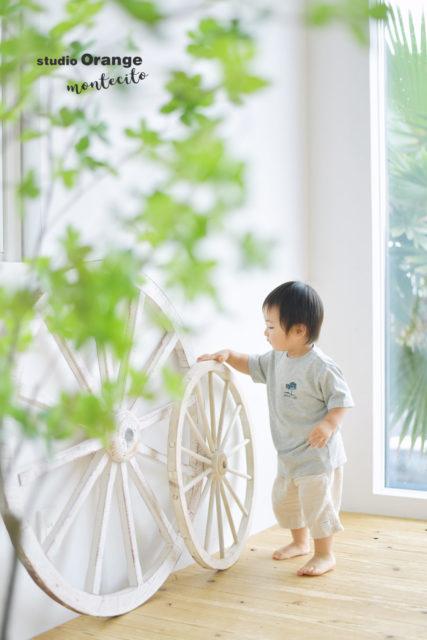 誕生日 宝塚市 写真館 川西市 スタジオオレンジモンテシート