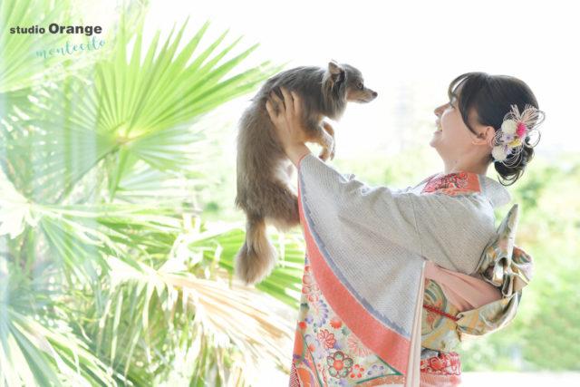 宝塚市 池田市 成人式 前撮り撮影 犬 チワワ