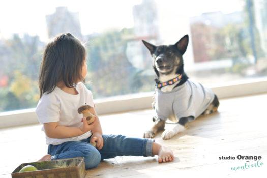 箕面市 お誕生日撮影 犬
