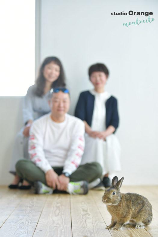 宝塚市 家族撮影 うさぎ ネザーランド