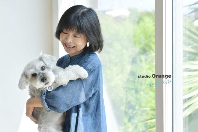 シュナウザー トイプードル 犬 ペット フォトスタジオ スタジオオレンジモンテシート